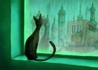 домашняя кошка Лора
