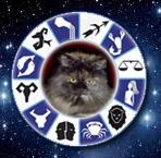 кошки - знаки зодиака