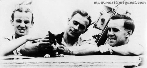 """кот Саймон на борту """"Аметиста"""""""