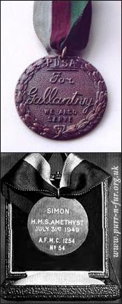 Медаль Марии Дикин кота Саймона