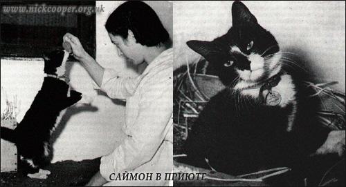 Саймон в приюте для животных