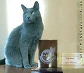 победитель годового рейтинга WCF