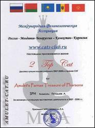 диплом призера Годового рейтинга МФА