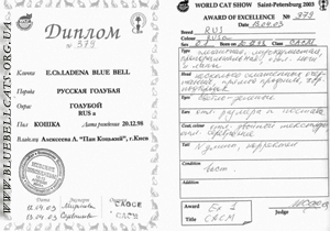 оценочный лист и диплом выставки WCF