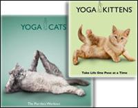 йога и кошки