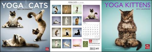 календари с кошками в позах йоги