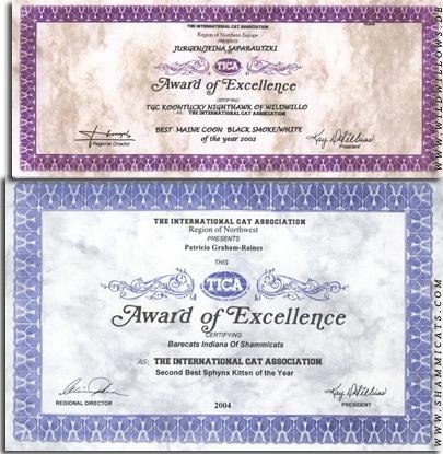 сертификат победителя выставочного сезона TICA (Regional Winner, International Winner)