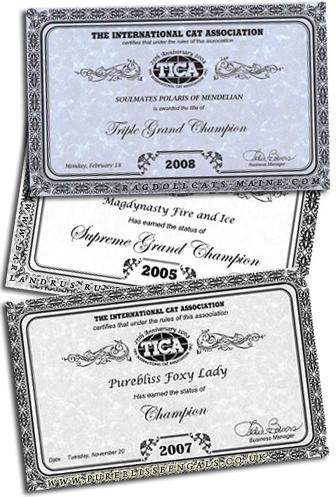 Титульные сертификаты TICA