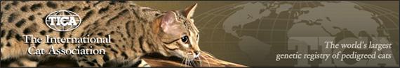 Международная ассоциация любителей кошек TICA