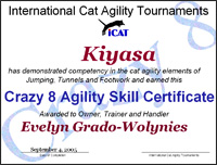 Crazy 8 Agility Skill Certificate