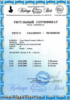 Выставочный класс ЧЕМПИОНОВ МФА