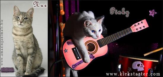 участницы The RockCats кошки Nue и Pinky