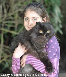 кот Кэфри с соседкой Эшли Тайлер