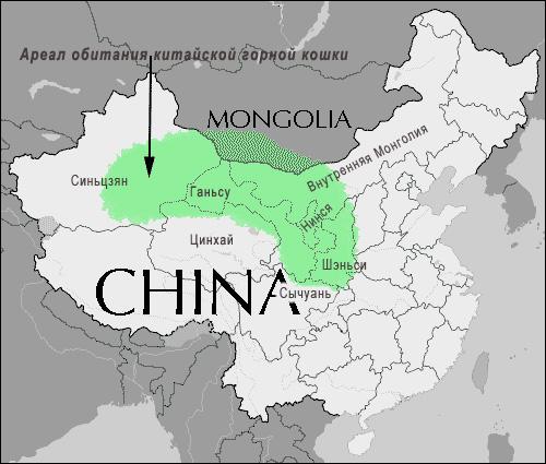 Ареал обитания китайской горной кошки