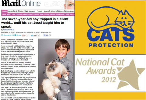 Джесси-Кет – победитель Cats Protection National Cat Awards 2012