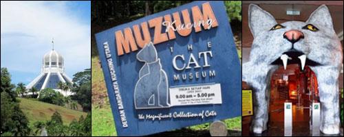 Кучинг – Музей кошек