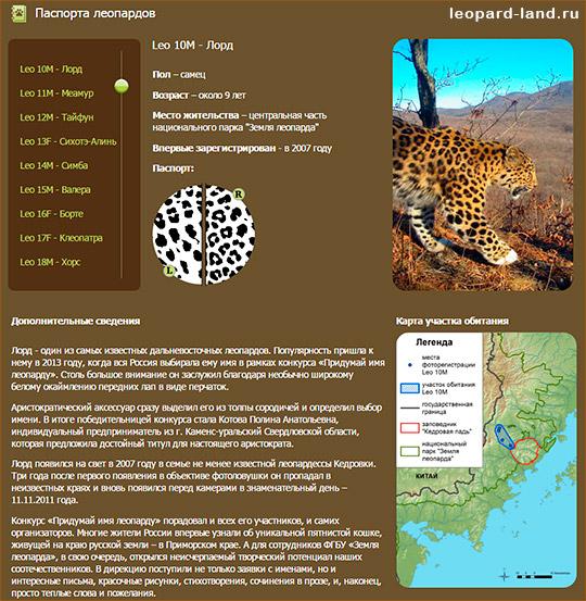 """Паспорт дальневосточного леопарда из национального парка """"Земля леопарда"""""""