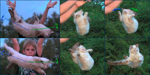 Переворот кошки в воздухе