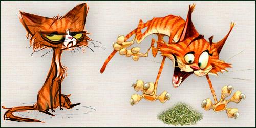 Эйфоретики для кошек