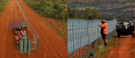 Забор от кошек в Австралии