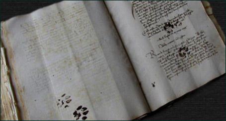Рукопись с кошачьими следпми