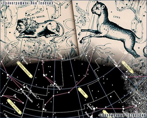 Созвездия Малого Льва и Рыси